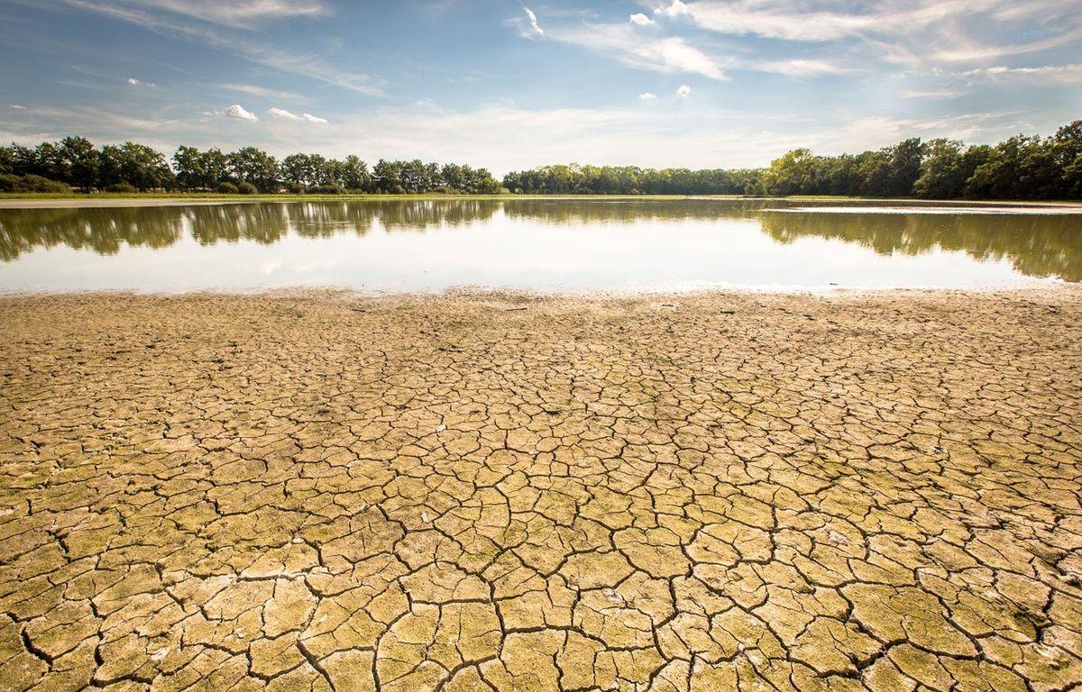 Episode de sécheresse dans l'Ain en août 2015. –  KONRAD K./SIPA