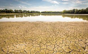 Episode de sécheresse dans l'Ain en août 2015.