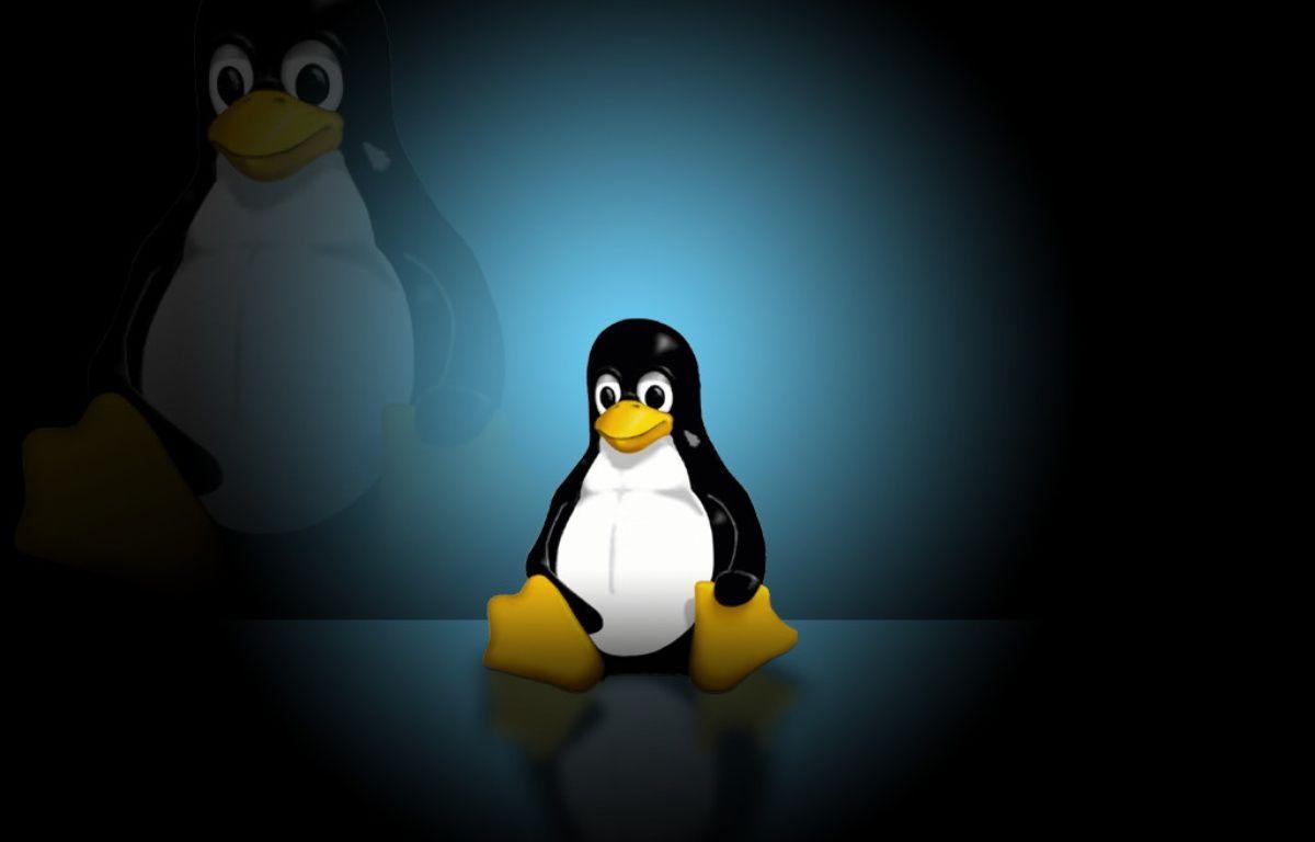 Tux, la mascotte de Linux. – DR