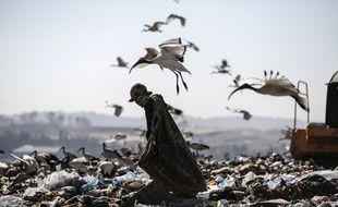 Un récupérateur à travers les déchets d'une décharge de Johannesbourg, le 29 juin 2018.