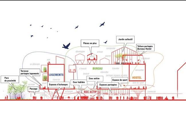Plan de coupe du projet immobilier intégrant une auberge sur l'île de Nantes.