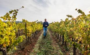 Maxence Panchau, vigneron, a fait appel à Terra Hominis.