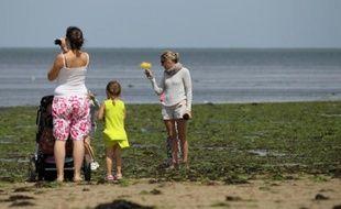 A Grandcamp-Maisy, en Normandie, les touristes s'arrêtent pour photographier les algues vertes qui ont envahi la plage, le 9 juillet 2014