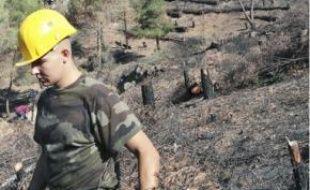 Près de 1 075 ha étaient partis en fumée lors des incendies fin juillet.