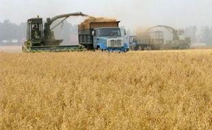 """Le recul le plus marqué est celui des matières premières agricoles, après des récoltes pléthoriques à travers le globe en 2014, grâce à une météo """"optimale"""""""