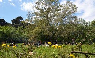 Le coin de nature de Las Rébès, à Montpellier.