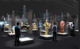 L'une des futures salles de l'l«Academy museum of Motion Pictures»