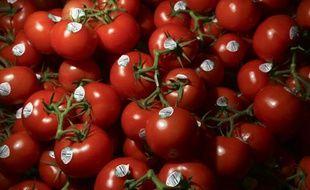 Des résidus de tomates utilisés dans la construction automobile? L'idée n'est pas si bête que ça...