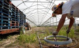 Un ouvrier agricole (photo d'illustration)