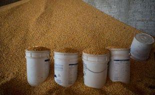 La Chine va faciliter les importations de maïs brésilien et souhaite inscrire dans sa politique de gouvernement le fait d'acheter plus de soja au géant sud-américain, ont indiqué les services de la présidence du Brésil
