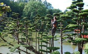 La taille des arbres, une tâche essentielle au parc oriental de Maulévrier.