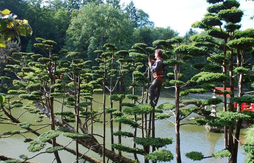 A Une Heure De Nantes Le Plus Grand Jardin Japonais D Europe