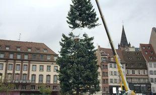Le sapin fissuré est enlevé de la place Kléber. Strasbourg le 9 novembre 2017.