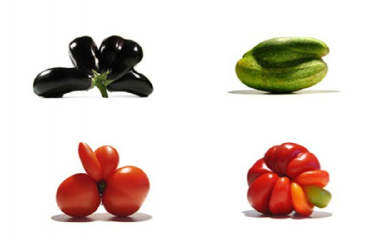Les fruits et légumes sauvés du gaspillage alimentaire par Gueules cassées. – Gueules Cassées
