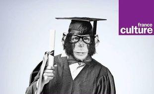 Chimpanzé habillé pour sa remise de diplôme