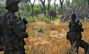 """Ils sont armés jusqu'aux dents et liés à des milices ou trafics de drogue. Les trafiquants d'espèces sauvages, prêts à abattre ceux qui les défient, ne sont rien moins que des """"syndicats du crime"""", face auxquels les autorités du monde entier luttent à armes inégales."""