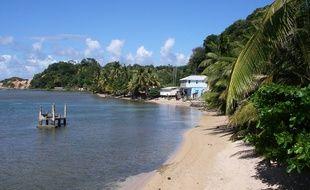 Une plage dans les Caraïbes. Illustration.