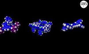 Des exemples de molécules-voitures assemblées pour la course.
