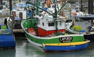 Un cortège peu habituel, arrimé à un bateau de pêche du port de Saint-Jean-de-Luz examine à la loupe son moteur: il est composé d'universitaires finlandais, qui entendent bien importer le mécanisme permettant de le faire carburer à l'huile de tournesol pure.