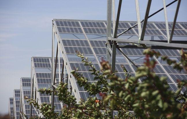 Aisne: Plus d'un million d'euros récoltés en crowdfunding pour le plus grand parc solaire des Hauts-de-France