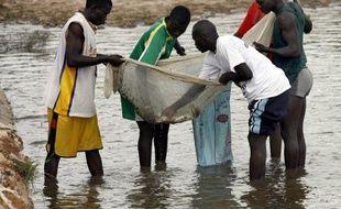 """Les ressources halieutiques du Sénégal ont été l'objet d'un """"pillage organisé"""" entre mars 2010 et avril 2012, avec des """"autorisations illicites"""" de pêche accordées à des navires étrangers, a affirmé Greenpeace dans un rapport publié jeudi à Dakar."""
