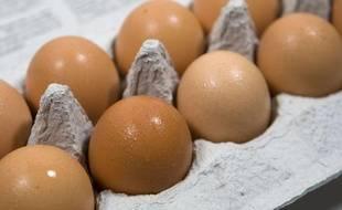 En 2022, il sera interdit de vendre des œufs pondus par des poules élevées en batterie.