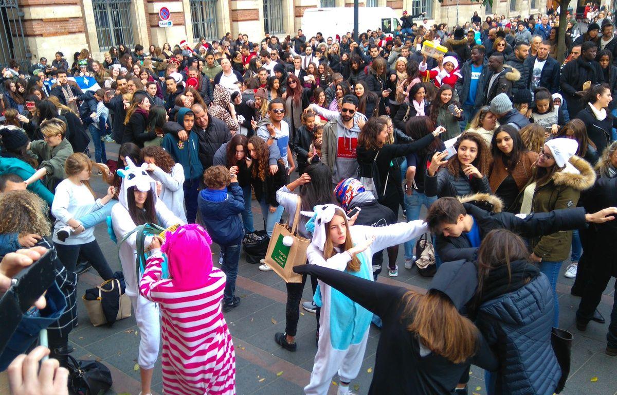 Mannequin Challenge géant à Toulouse, le dimanche 4 décembre 201. – H. Menal - 20 Minutes