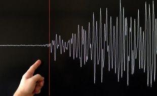 Le séisme d'une magnitude de 4,8 qui a secoué la région de Pau dans la nuit de dimanche à lundi a été fortement ressenti par la population mais n'a entraîné que quelques fissures sur des bâtiments