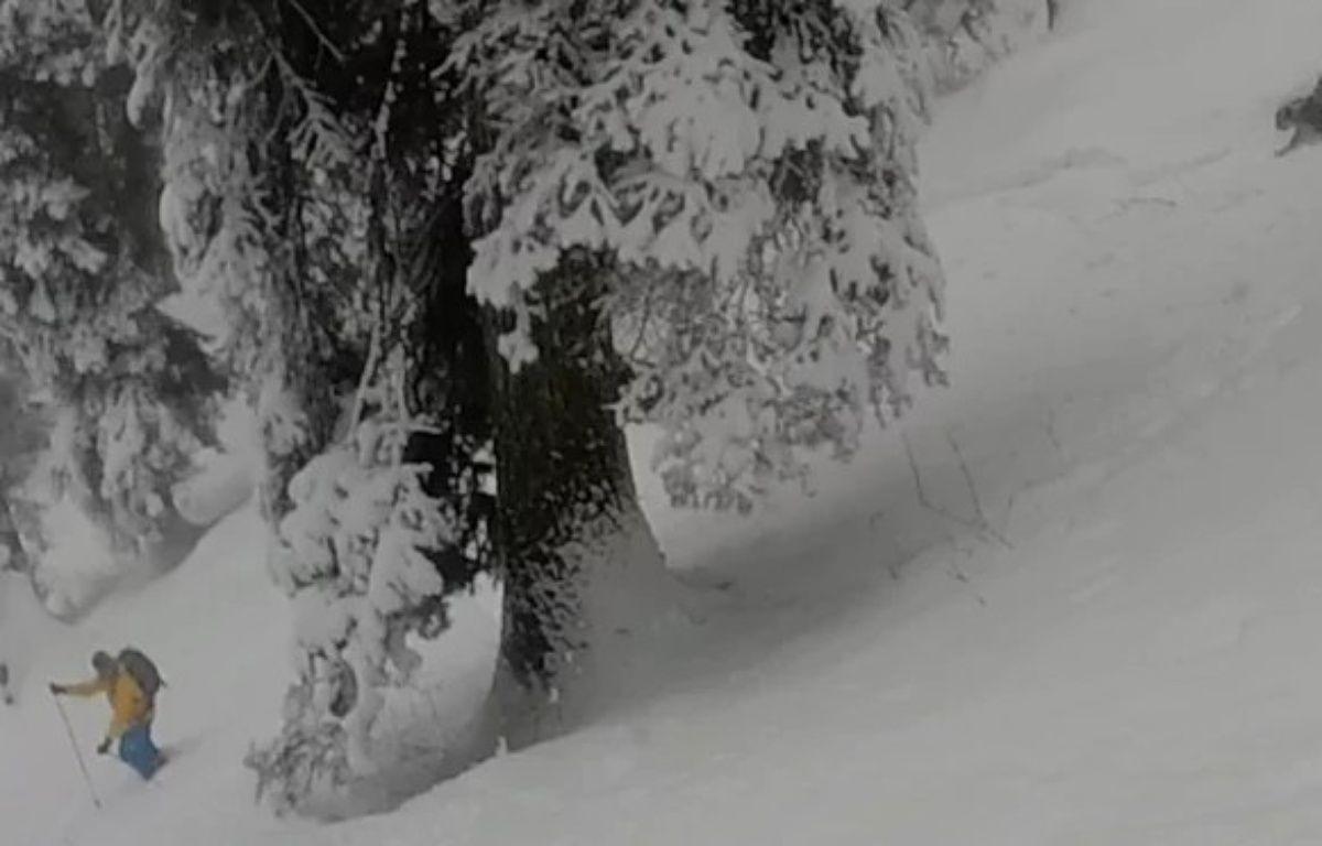 Des skieurs ont rencontré un léopard des neiges dans le nord de l'Inde. – Capture d'écran