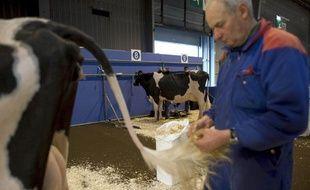 Un fermier prépare ses vaches en vue de l'ouverture du Salon international de l'Agriculture qui se tient Porte de Versailles à Paris, du 19 au 27 février, le 18 février 2011.