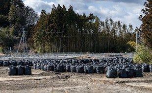 """Des sacs noirs, contenant des sols contaminés à Okuma, dans la préfecture de Fukushima, dans une zone déclarée """"zone interdite"""" après la catastrophe nucléaire de 2011."""