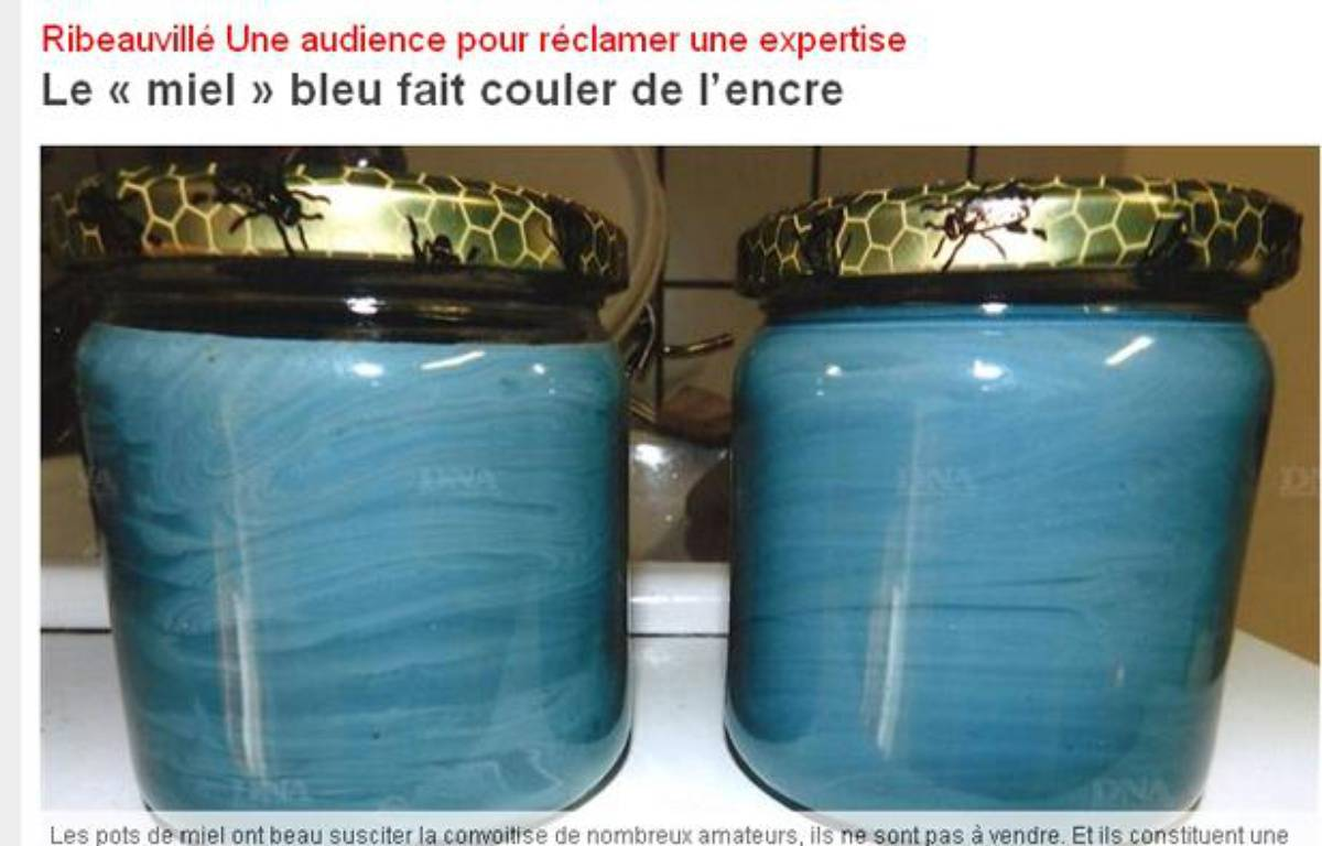 Capture d'écran du site des Dernières nouvelles d'Alsace. – www.dna.fr