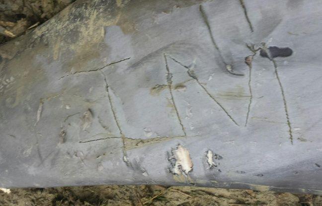 Des inscriptions au couteau ont été portées sur le corps d'un dauphin, retrouvé échoué en Bretagne.
