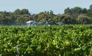 Des épandages de pesticides sont soupçonnés d'avoir provoqué des malaises dans une école de Villeneuve-de-Blaye en Gironde.
