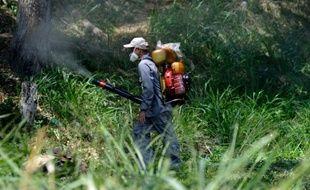 Un employé du ministère de la Santé vénézuélien désinfecte par fumigation des zones suceptibles d'accueillir des moustiques Aedes Aegypti, responsables de l'épidémie de Zika, le 28 janvier à Caracas