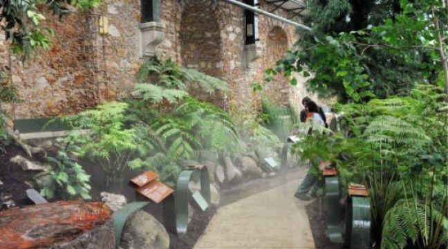 Les Serres Du Jardin Des Plantes Bien Plant Es Dans Le