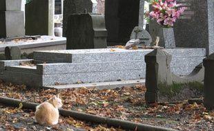 Les enfants âgés de 10 et 11 ans avaient profané une quarantaine de tombes. (Illustration