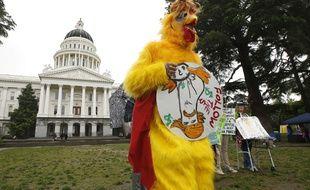 Des manifestants demandent à Donald Trump de publier sa feuille d'impôts, à Sacramento le 12 avril 2017.