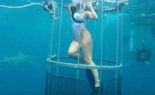 La vidéo de l'actrice porno se faisant mordre par un requin serait un fake
