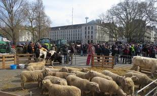 Des zadistes ont manifesté ce lundi midi à Nantes