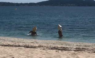 Deux amis se sont déguisés en bouée pour se baigner malgré le confinement