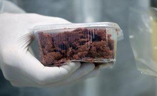 L'agence suédoise de la Sécurité alimentaire a demandé lundi à la justice d'enquêter sur une entreprise soupçonnée d'avoir fait passer de la viande de cheval d'origine polonaise pour du filet de boeuf suédois.