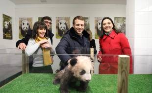 Le président de la République Emma nuel Macron aux côtés de sa famille, a rencontré le panda Yuan Meng