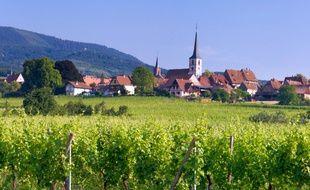 Mittelbergheim rêve de devenir la troisième commune alsacienne à devenir un des villages préférés des Français.