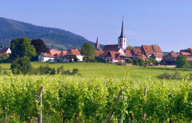 Alsace: Arsène Wenger, Sébastien Loeb, ces personnalités votent Mittelbergheim pour «le village préféré des Français»