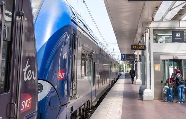 Lyon: Quelques lignes TER au ralenti mardi lors de la journée de mobilisation des personnels SNCF