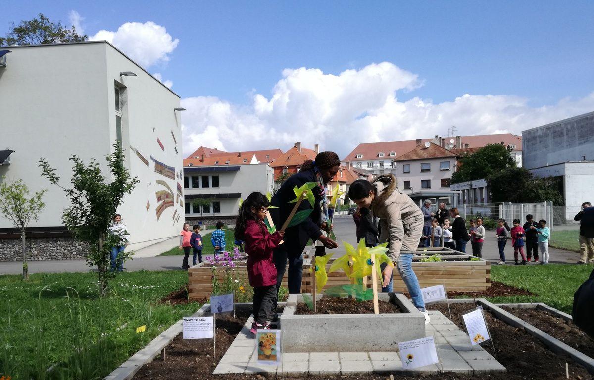 A l'école Albert le Grand, l'installation du jardin a coûté près de 11.000 euros, financés par la municipalité. – B. Poussard / 20 Minutes.
