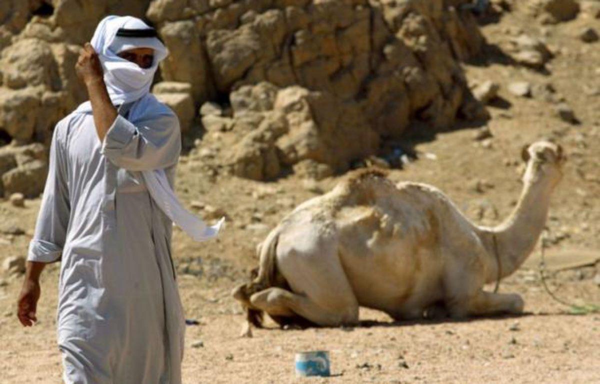Le touriste singapourien enlevé vendredi dans la péninsule égyptienne du Sinaï par des Bédouins réclamant la libération de l'un des leurs a été relâché au bout de quelques heures, a annoncé une source de sécurité. – Eitan Abramovich afp.com