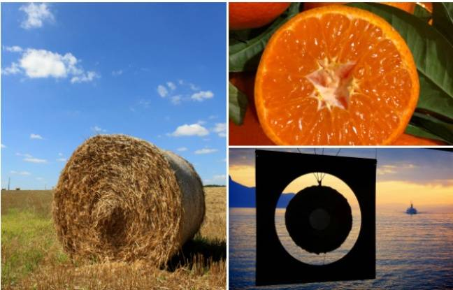 Meule de foin, agrumes, billes... Vos plus belles photos de sphères