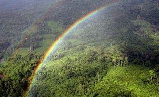 Les grands pays forestiers vont enfin pouvoir faire valoir et surtout rémunérer leurs efforts de protection de la forêt, dont la destruction compte pour 20% des émissions de gaz à effet de serre, mais qui avaient été laissées pour compte par le Protocole de Kyoto.
